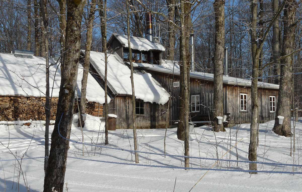 photo cabane à sucre au printemps sous la neige
