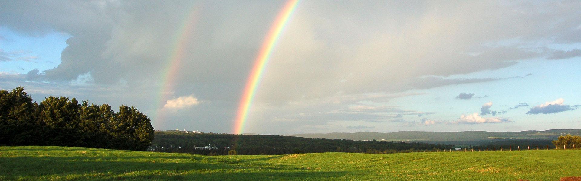 arc-en-ciel dans les champs